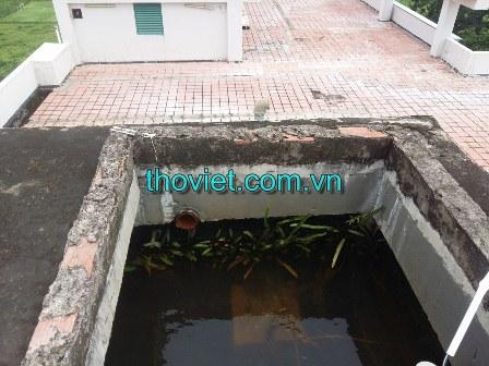 Bể nước không có nắp đậy làm rong rêu phát triển gây ô nhiễm