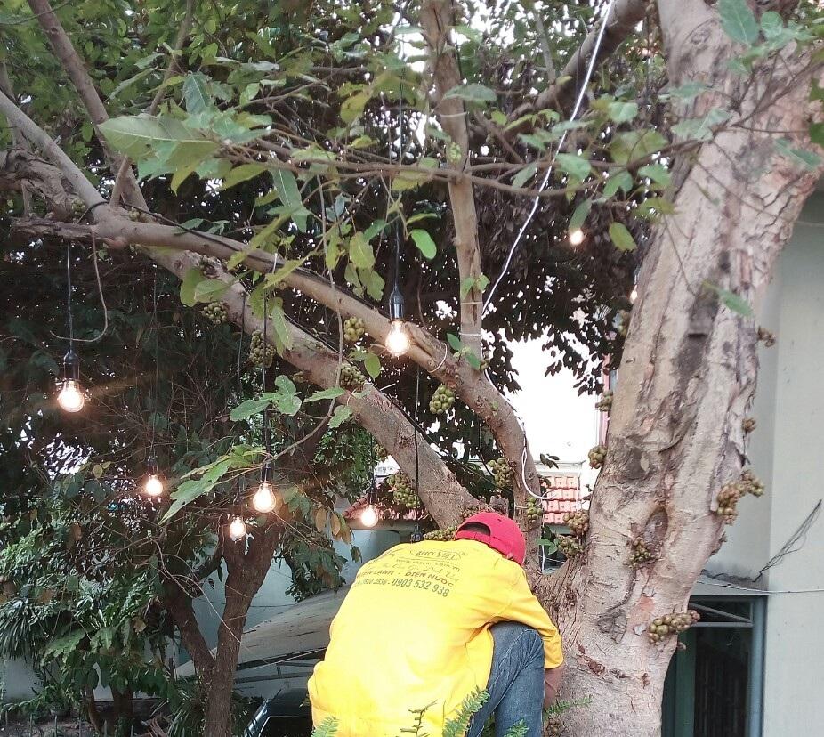 Thợ lắp đèn trang trí tại quận Phú NhuậnThợ lắp đèn trang trí tại quận Phú Nhuận