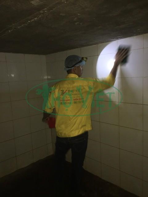 Thợ vệ sinh bể nước ngầm tại Bình Dương