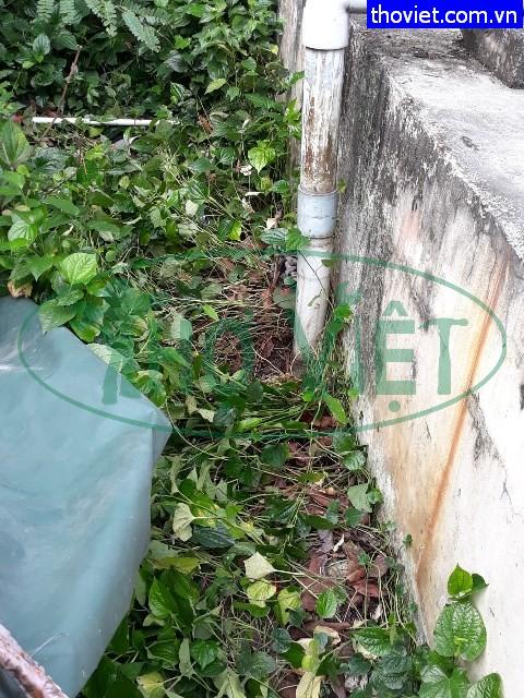Dò nước rò rỉ Khu công nghiệp tại Tây NinhDò nước rò rỉ Khu công nghiệp tại Tây Ninh