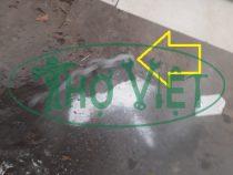 Dò ống nước bị vỡ âm nền tại phòng trọ Phú Nhuận