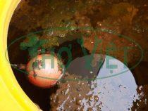 Vệ sinh bồn nước nhựa quận Tân Bình