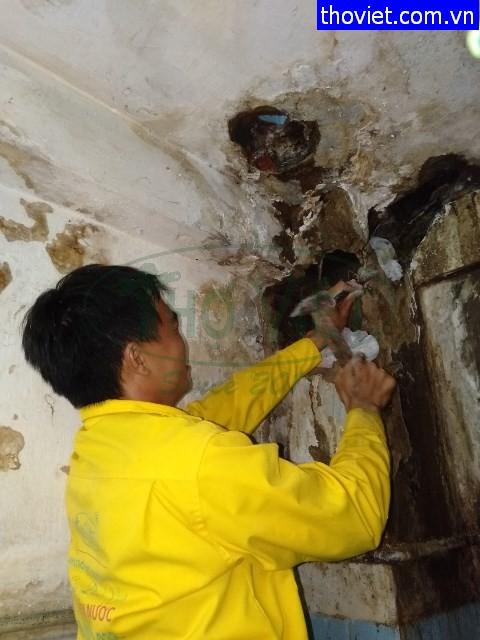 Thợ sửa ống nước bị bể trong hộp gen tại quận 1